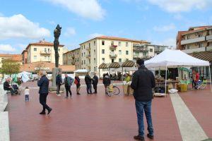 Piazza Zucchi mercato